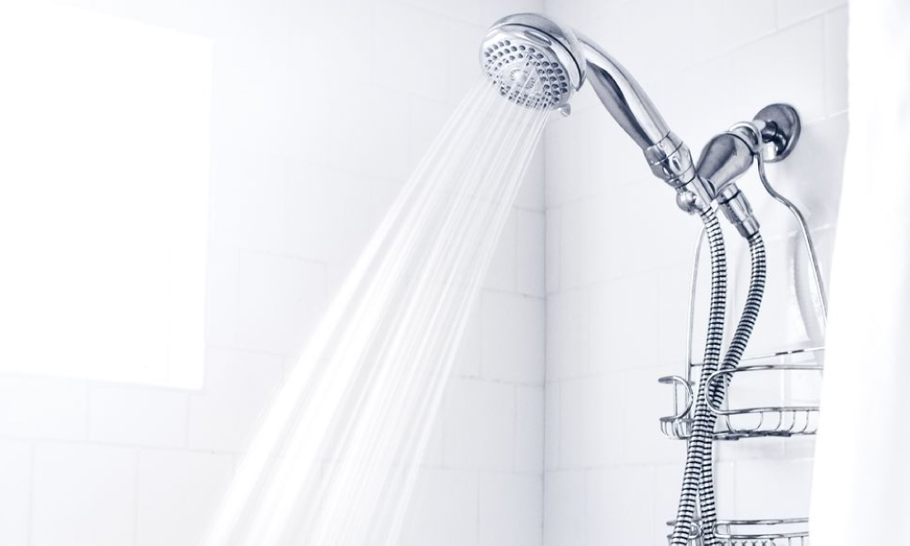 shower head and hand shower